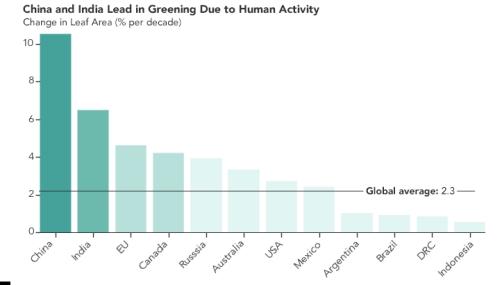 2000~2017年の間に森林が回復していた国の棒グラフ