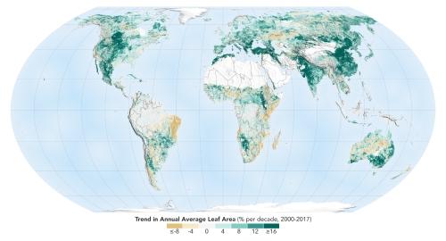 2000~2017年の間にインドと中国は森林が回復していた