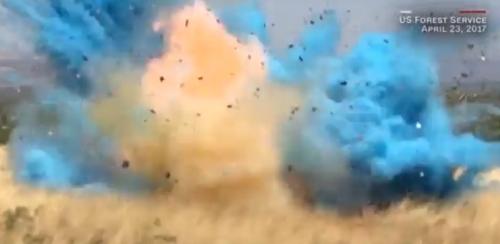 2017年の米アリゾナの山火事はYouTuberが原因だった