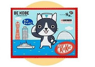 フェリシモが猫殺処分を減らす神戸市のふるさと納税で提携