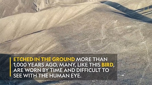 新しいナスカの地上絵をドローンが発見