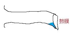 鼓膜付近に表面張力でひっついた水